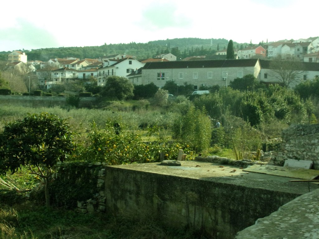 orchard in supetar